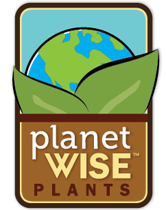 planetwise305