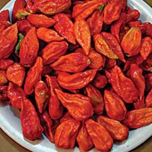 Pepper-Hot-Bhut-Jalokia