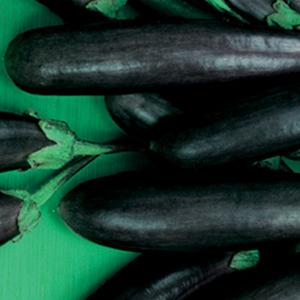 Eggplant Little Finger