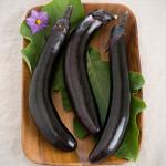 EggplantOrient Express