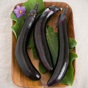 Eggplant Orient Express