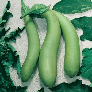 Eggplant Thai Long Green