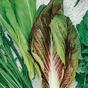 Salad Mix Italian Salad Mix