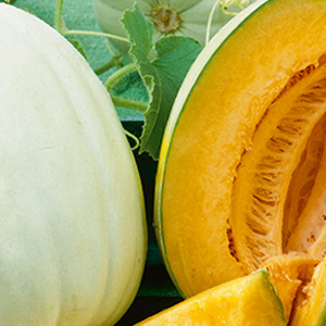 melons-orange-honeydew